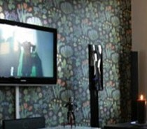 tv room 210x1851 tv room 210x1851